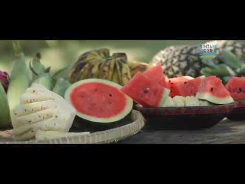 Bintan Resorts Destination Promotion Video 2015
