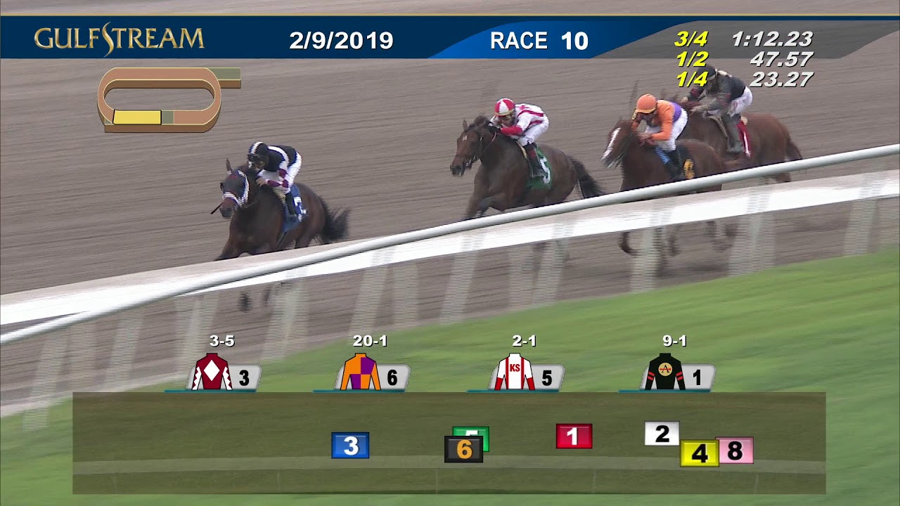 Horse Racing: - Belmont Stakes (field of 10) highlights 2