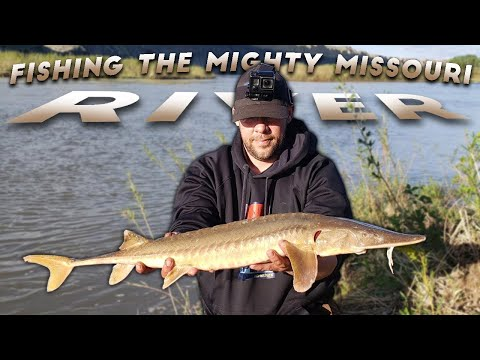 Fishing The Missouri River For Sturgeon & Channel Catfish