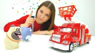 Домашние животные на пикнике. Видео для детей: игрушки из мультфильмов.