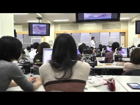 Kobe University School of Medicine, Faculty of Medicine 2013