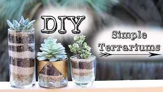 ➳ DIY Simple Succulent Terrariums Gold Jars