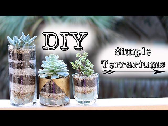 Diy Simple Succulent Terrariums Gold Jars Youtube