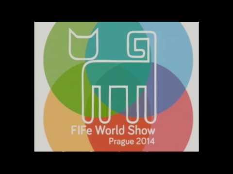 FIFe World Show Prague 2014 Sunday afternoon