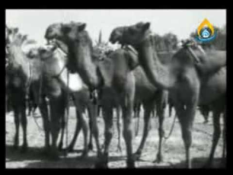 History (Imam Hussain Shrine)Pt-1.flv