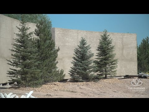 view Gardens on Spring Creek - Expansion Update video