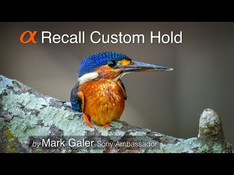 Recall Custom Hold - Sony Alpha Custom Camera Setting