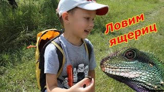 VLOG: Ловим ящериц. Крутая игра - охотник за ящерицами.