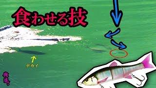 【巨大ルアー】ワザを使って巨大魚の捕食スイッチを入れる