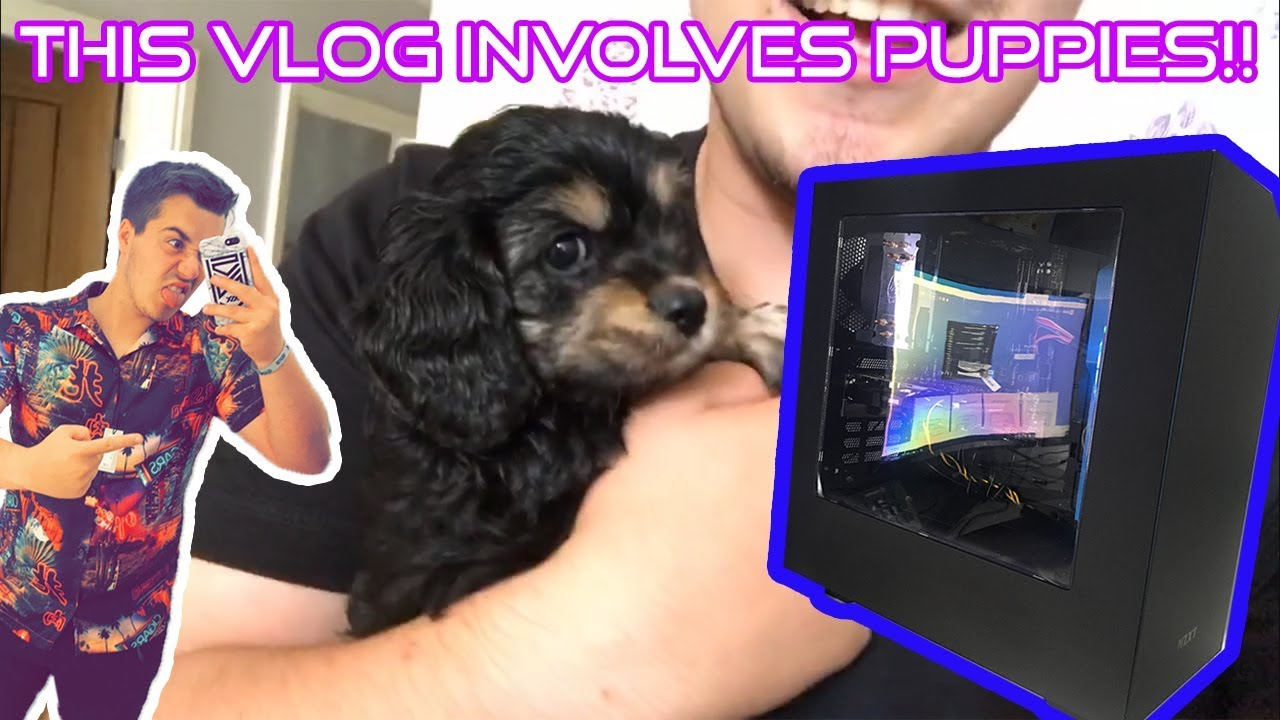 *Warning* This Vlog Involves Cute Puppies