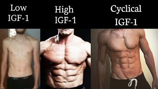 BCAA and Fasting - Should You Take Branched-Chain Amino Acids While Fasting - mTOR and IFG-1