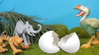 НЕИЗВЕСТНОЕ ЯЙЦО. 2 Серия. КТО ЭТО? Мультфильмы про животных для детей