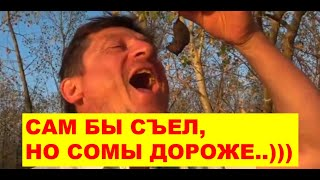 Жареная мышь против перловицы - что вкуснее для сома. Эксперимент. Нижняя Волга тур.