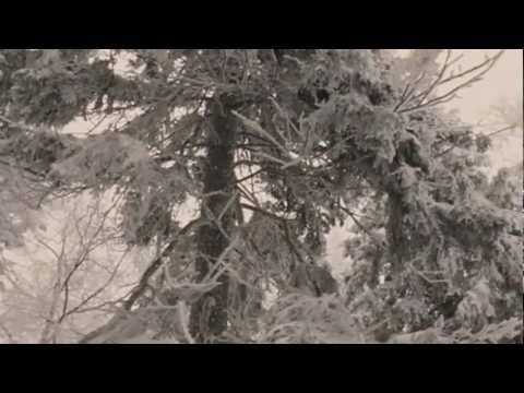 In Like a Lion (Always Winter) by Relient K Music Video