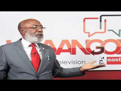 Wakili Rungwe acharuka uchaguzi TLS, amtaka Mwakyembe asiwavuruge