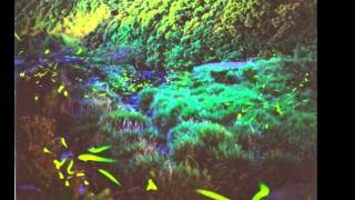 山本みゆき - 夢追いホタル