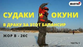 За этим балансиром окуни и судаки лезут в драку Рыбалка на реке в сильный мороз