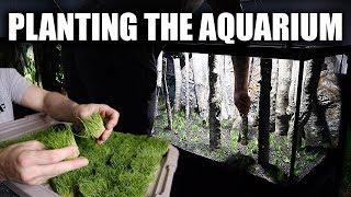 the-planted-aquarium-2