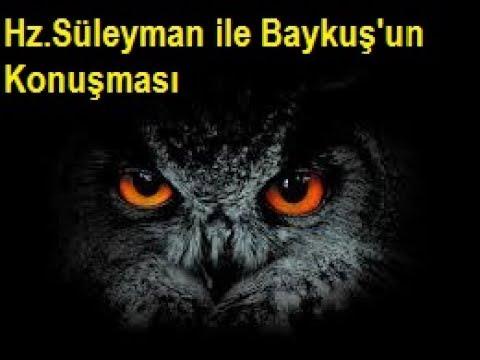 Hz Süleyman ile Baykuş'un Konuşması