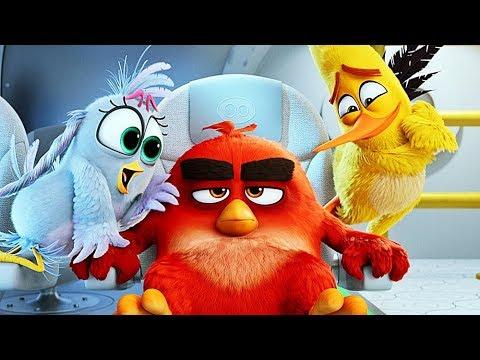Angry Birds Der Film Deutsch