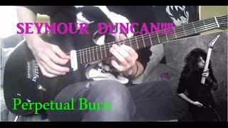Seymour Duncan YJM Fury and Perpetual Burn Pickups