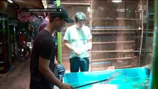 pasar ikan hias sumenep di menteng jakarta pusat ims