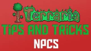 Terraria - How to get all NPC