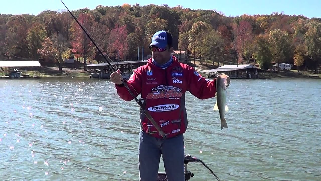 Bass fishing kentucky lake youtube for Kentucky out of state fishing license