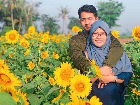 wivlog-#9-ngedate-di-kebun-bunga-matahari-sepatan