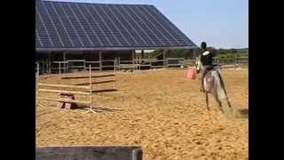 écuries des agriers, démo obstacle, karine et provence, 25 06 2011