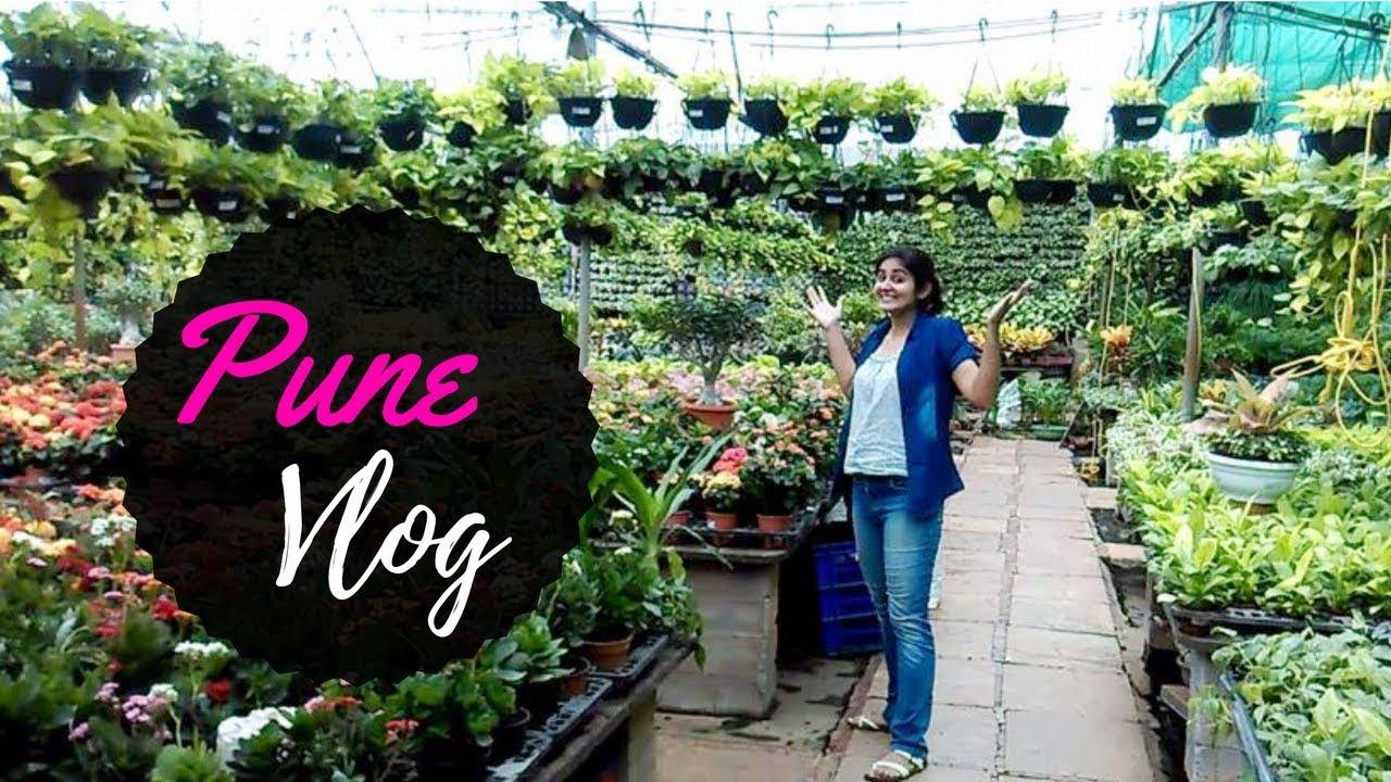Pune Nursery Visit Succulent Plant