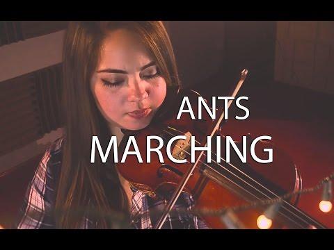 Ants Marching - Blú Quartet (Dave Matthews Band cover)
