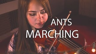 Ants Marching - Blú Quartet (Dave Matthews Band cover)
