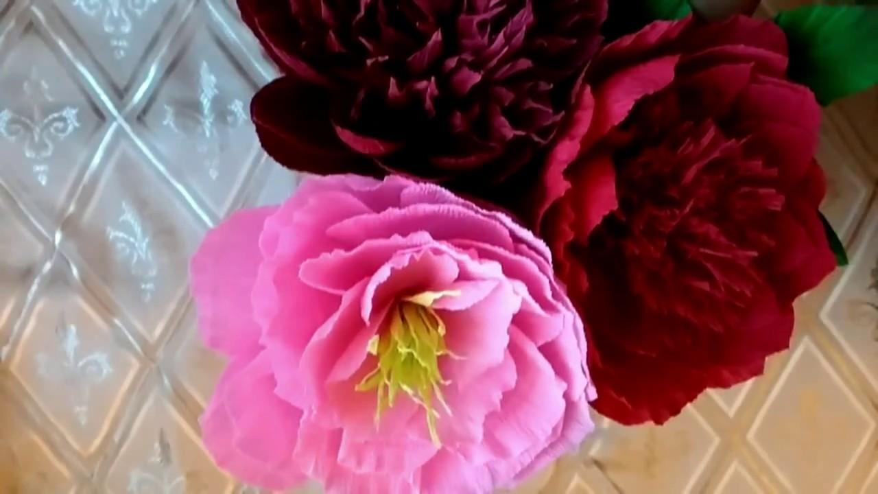 Что такое крепированная бумага Как делать розы, пионы, шар, помпоны своими руками