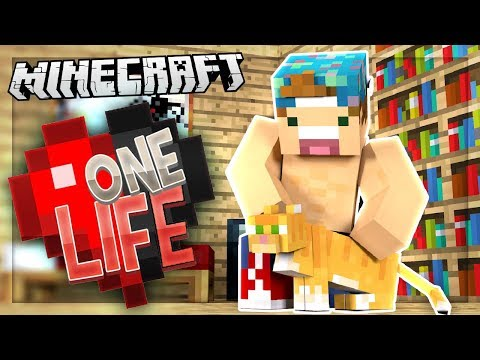 MY NEW PET KITTY!?   One Life SMP #24