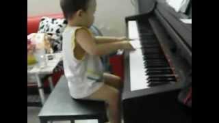 "Bu ""choi dan"" piano"