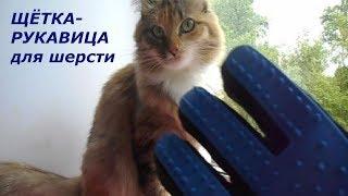 Щётка-рукавица для вычёсывания шерсти животных