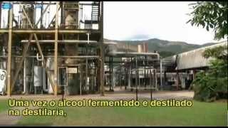Portugueses Pelo Mundo - Caracas, Venezuela