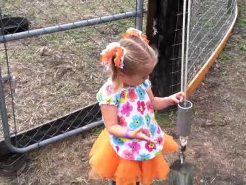 Pumpkin Patch hayride, goats, and corn maze