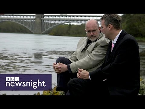 Does UKIP have a future after Brexit?  - BBC Newsnight