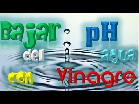 Bajar ph del agua con vinagre para plantas el ratillo de - Bajar ph piscina salfuman ...