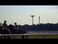 フォーリー騎手のムチ一発。サトノケンシロウなど稲荷特別の輪乗り。2017年、京都競…