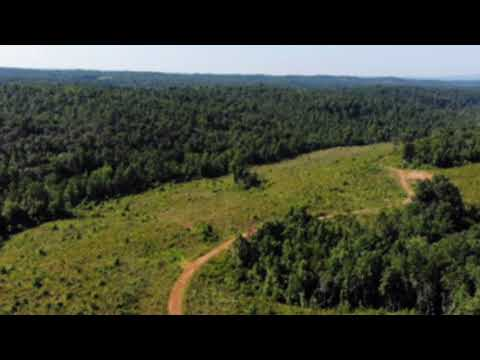 Two Creeks / Green Mountain Package | American Forest Management Inc