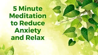 5 Minute Quick Anxiety Reduction Guided Mindfulness Meditation