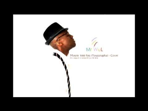 Mourir 1000 fois COVER - Youssoupha par Mr WuL