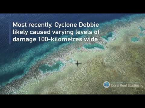SEE what Cyclone Debbie, global warming has done to the Great Barrier Reef