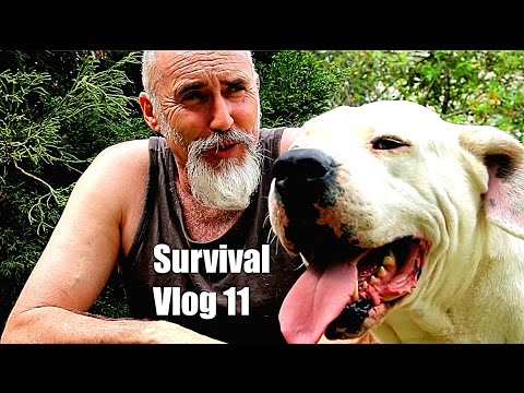 Survival  Clay Tall Stories Vlog 11