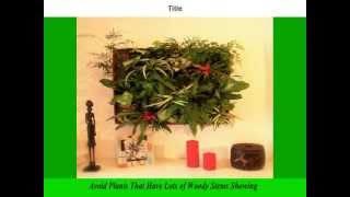 Vertical Gardens | Vertical Gardening | Diy Vertical Gardening | Ideas | How To | Diy