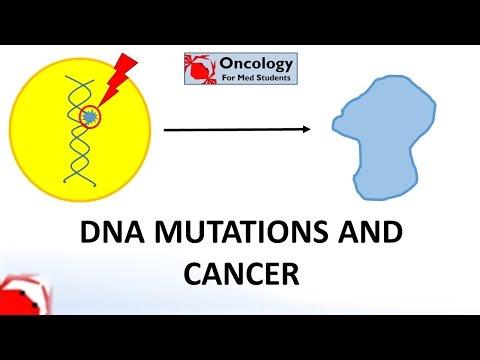3: Molecular basis of cancer part 1: changes in DNA underlie cancer
