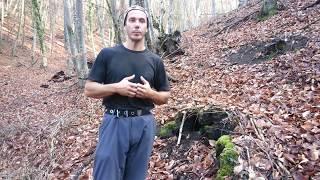 Тестостерон поднять на 100% Упражнение Тестостерон и долголетие